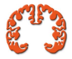 LXXI Reunión Anual de la Sociedad Española de Neurología