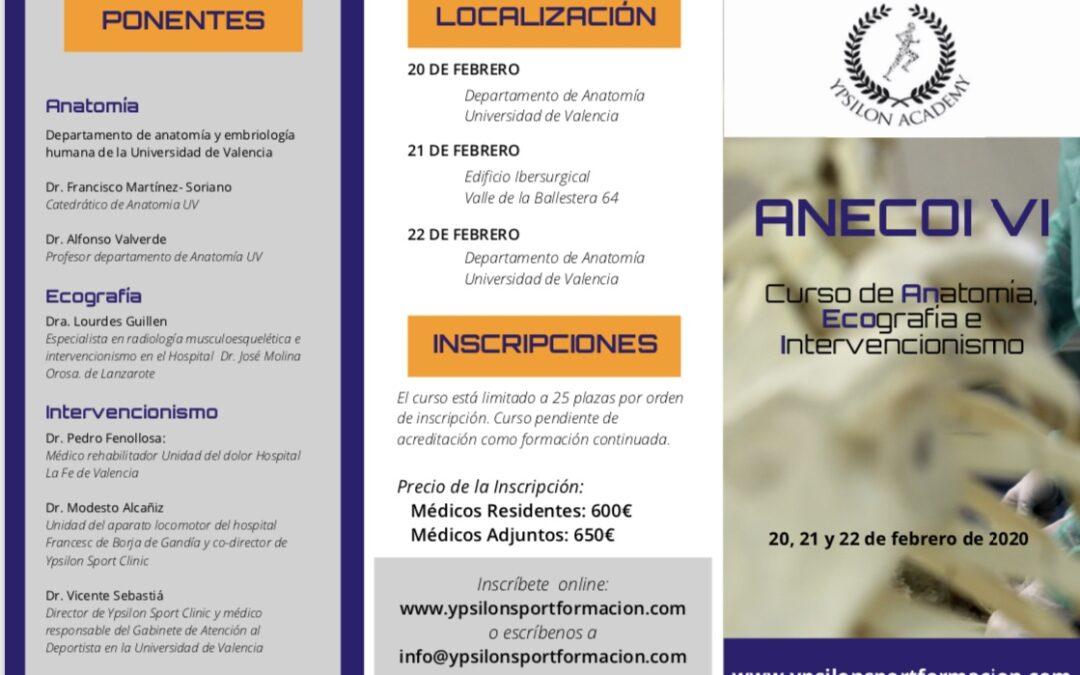 ANECOI VI. Curso de Anatomía, Ecografía e Intervencionismo